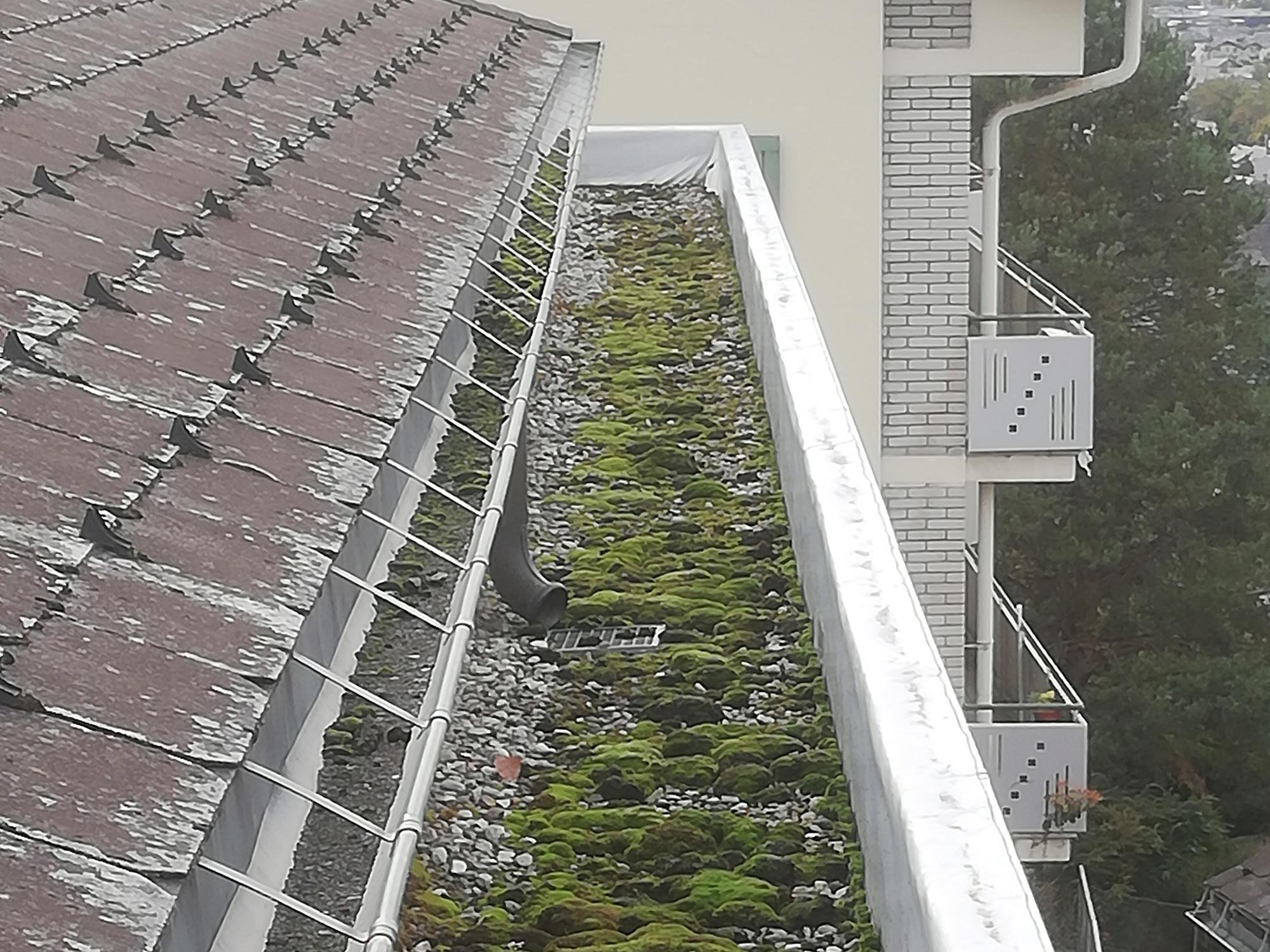ABDACH AG in Brig Glis, Wallis – Dachunterhalt